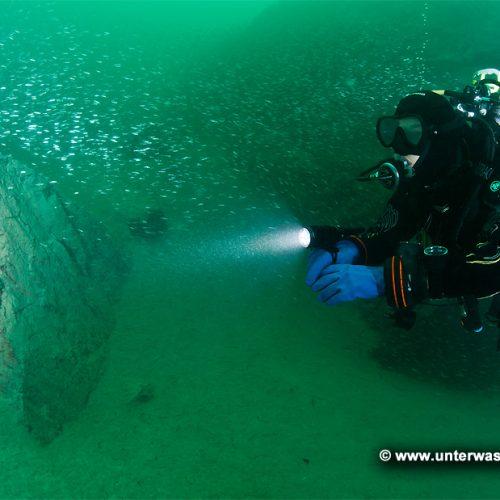 Ammonite Lichtsysteme