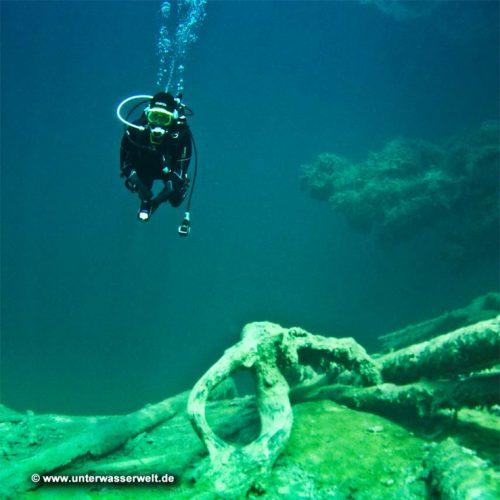 Oceanic Atemregler ZEO