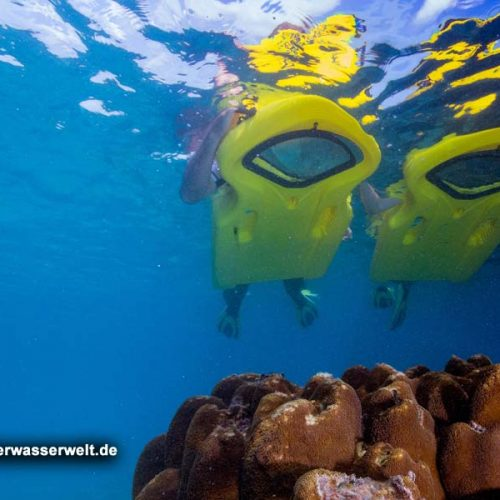 Milaidhoo-Maldiven_17_04g