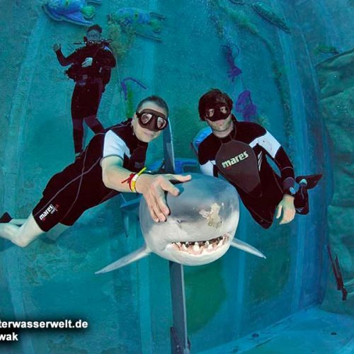 freediving_teil_1_12_02g