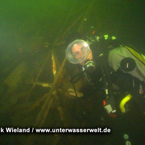 Wieland_08_meissen_09g