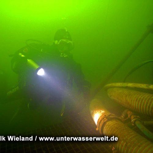 Wieland_08_meissen_10g