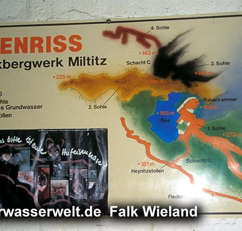 Wieland_08_mittiz_01g