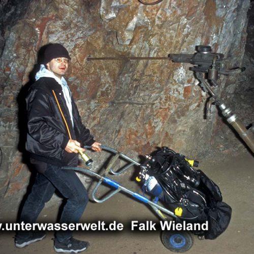 Wieland_08_mittiz_02g