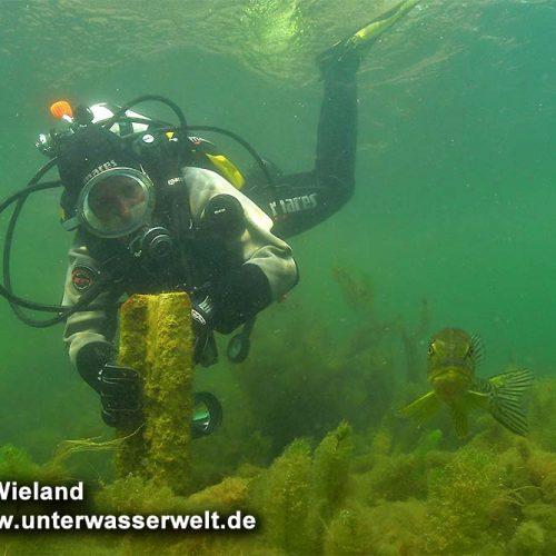 wieland_09_ammelshain_08g